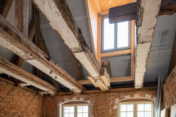 Rénover complètement sa maison : les différentes possibilités